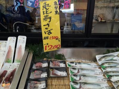 大阪中之島漁港 中之島みなと食堂 値段 活魚 加工品 切り身 鯖