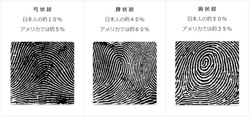 日本の指紋の分類