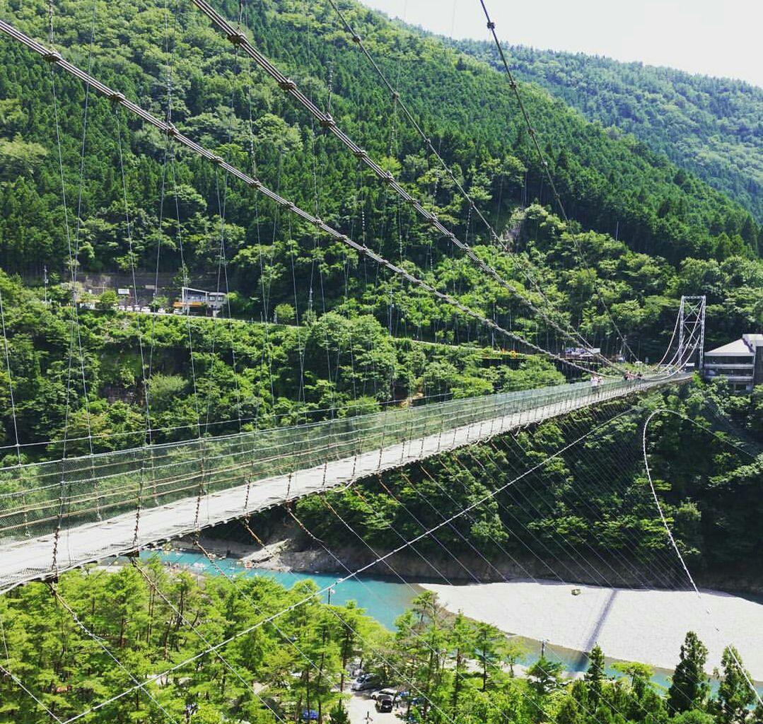 【よ~いドン!】いきなり!日帰りツアー「奈良・十津川」で自然&大和牛を満喫