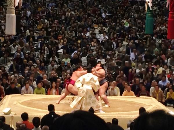 大相撲 神戸巡業 秋巡業 スケジュール 開催場所