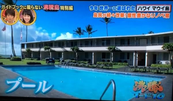 沸騰ワード マウイ島 沸騰島 ハナ タダで泊まれる リノベーション宿 ブティックホテル 安い 予約 モマウイシーサイドホテル プール付き 料金