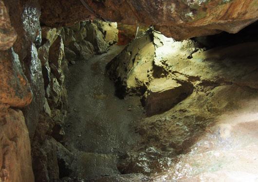 ヒルナンデス 秩父バスツアー 橋立鍾乳洞 ひんやり洞くつ探検