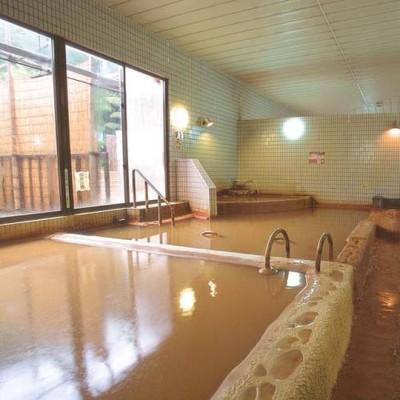 花山温泉 薬師の湯 和歌山 冷たい温泉 ぬるい 炭酸泉 源泉かけ流し 濃厚