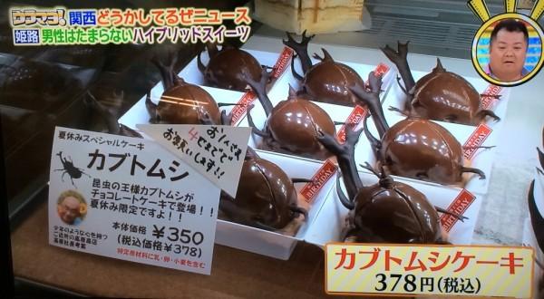 ウラマヨ 姫路バースディ 洋菓子店 カブトムシケーキ チョコレートケーキ ハイブリットスイーツ ヘラクレスオオカブト オプション 幼虫
