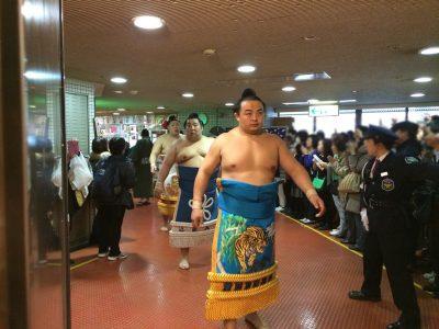大相撲 秋巡業 2016年 平成28年 スケジュール 日程 会場 チケット 入場料 問合せ 場所 練習 写真