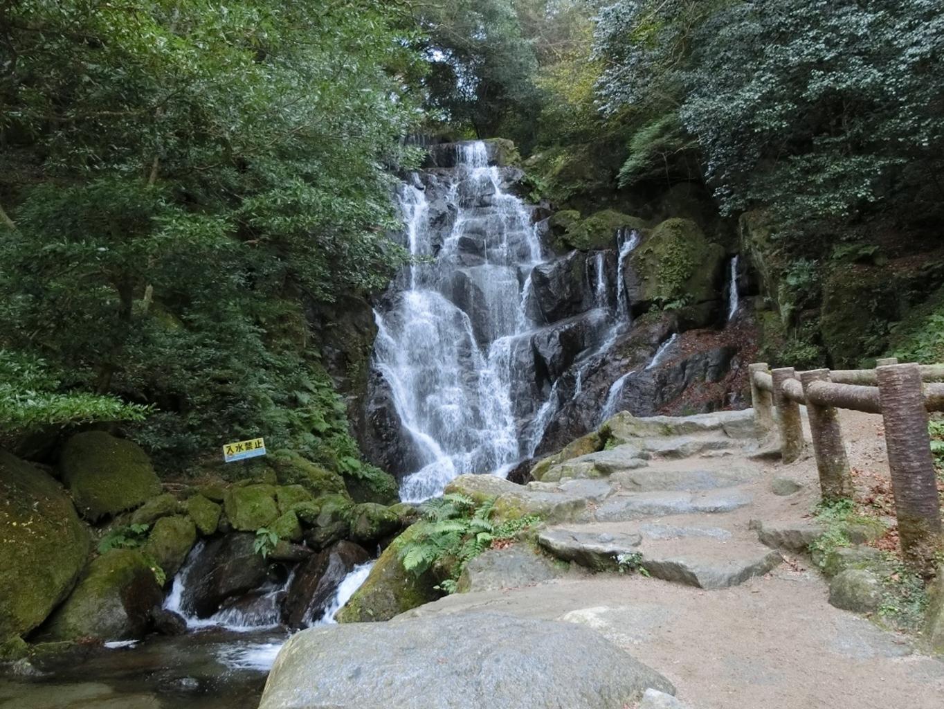 【よ~いドン!】いきなり!日帰りツアー「福岡・糸島」滝の絶景&老舗もつ鍋