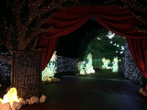ネスタリゾート神戸 NESTA RESORT KOBE 兵庫 三木 イルミネーション ネスタイルミナ 光の散歩道 入場料 行ってきました ブログ フローラルアーケード 光のトンネル フルカラーLED