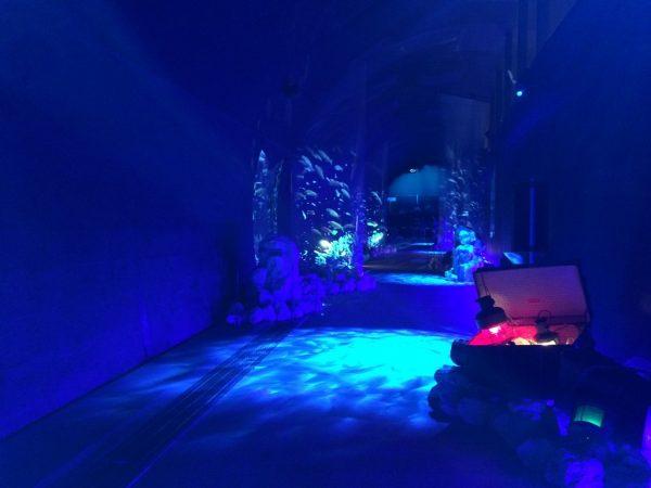 ネスタリゾート神戸 NESTA RESORT KOBE 兵庫 三木 イルミネーション ネスタイルミナ 光の散歩道 入場料 行ってきました ブログ アンダーウォーターワールド 沈没船 ポセイドン プロジェクションマッピング