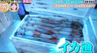 沸騰ワード10 長崎県 壱岐島 日本のモンサンミッシェル 小島神社 神域 パワースポット イカ漁