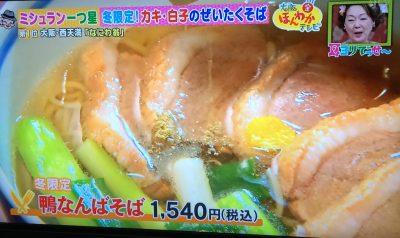 ほんわかテレビ そばランキング 大阪 人気 行列 手打蕎麦 なにわ翁 ミシュラン ビブグルマン 一つ星 西天満 老松通り 鴨なんばそば