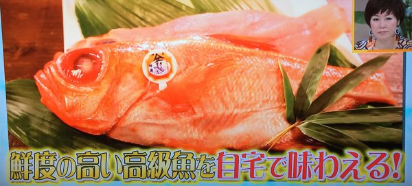 須崎 日戻り金目鯛