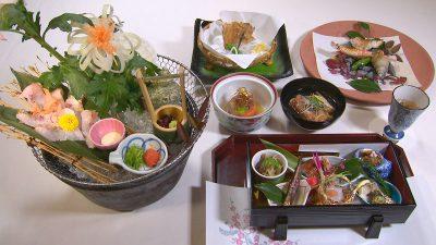 日本料理 松江 和らく 幻の大ノドグロコース