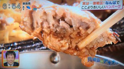 キャスト アキナのここよりおいしいアレ 難波で美味しいハンバーグ探し グリル清起 ハンバーグステーキ