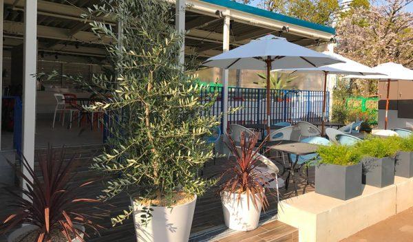 天王寺公園 てんしば オープン レストラン ビアガーデン ソライロキッチン バーベキュー 芝生広場 あべのハルカス
