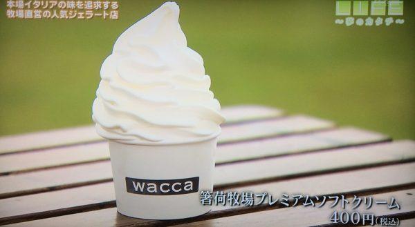 LIFE 夢のカタチ ジェラート 兵庫県多可郡 ワッカ wacca 箸荷牧場 ミルクジェラート トウガラシ ソルベ ソフトクリーム