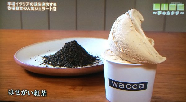 LIFE 夢のカタチ ジェラート 兵庫県多可郡 ワッカ wacca 箸荷牧場 ミルクジェラート トウガラシ ソルベ ソフトクリーム はせがい紅茶