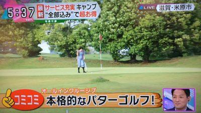 本格的なパターゴルフ