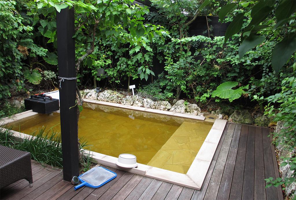 【旅サラダ】俺のひとっ風呂「また行きたい露天風呂ランキング」