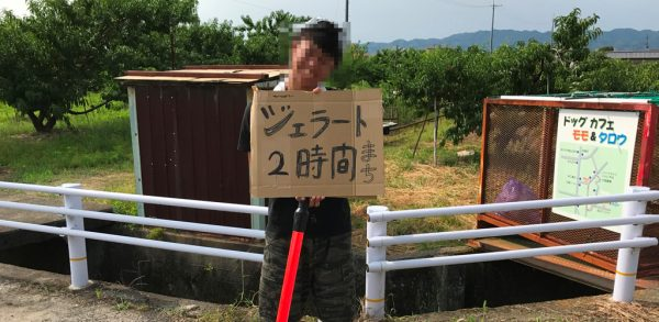あらかわの桃 和歌山 ジェラート やぶもとはたした農園 藤桃庵 行列 待ち時間 テレビで紹介