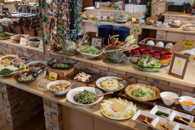 あさパラ 南信州バスツアー JTB ちこり村 バイキング 食事 ランチ