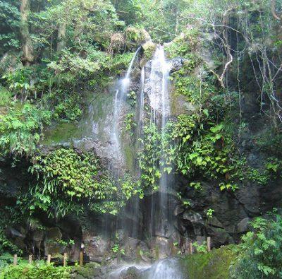 ヒルナンデス 八丈島 裏見ヶ滝温泉 秘境温泉