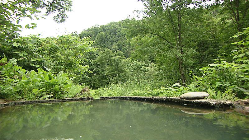旅サラダ 石抱温泉