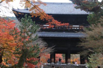 サタデープラス くらしプラス 8月12日 京都 朝観光 デヴィ夫人 南禅寺三門