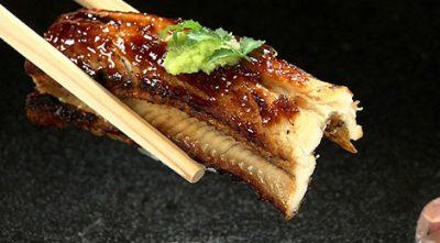 バナナマンのせっかくグルメ 兵庫県 明石 タコ 菊水鮓 寿司 明治30年創業