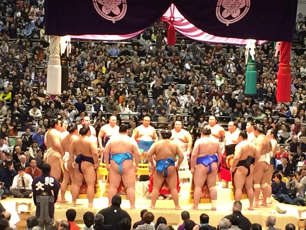 大相撲 番付 発表