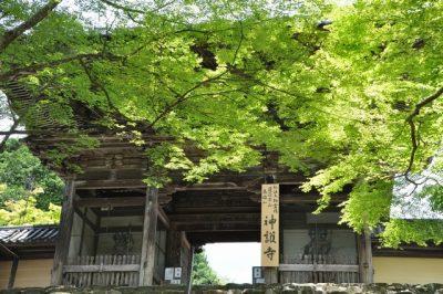 朝だ!生です旅サラダ ゲストの旅 8月12日 ラブリ 京都 神護寺