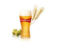 阪神競馬場 ビアコレ 世界のビール イベント 秋競馬 バドワイザー
