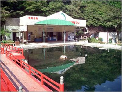 きよし・黒田の今日もへぇーほぉー 有馬温泉 有馬マス池 ます釣り