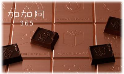 あさパラ 京都 スイーツ ハイヒールモモコ 行列 加加阿365 チョコレート