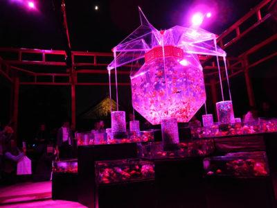 アートアクアリウム京都二条城 超花魁 紫