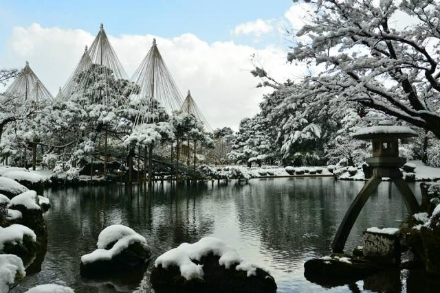 バナナマンせっかくグルメ グルメ 2月11日 石川 金沢 カニ のどぐろ