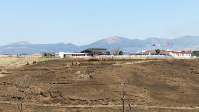 エル・パティオ牧場