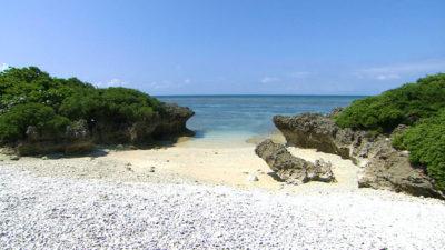 ウラピナ サンゴの浜