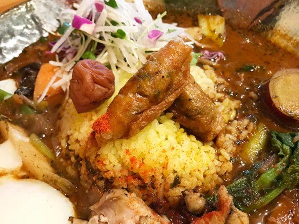 鶏なっぱスープカレー 鶏ざんまい 梅干し 鶏皮餃子