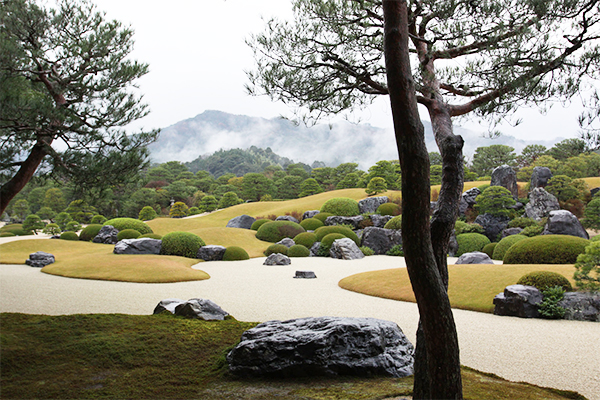 朝だ!生です旅サラダ ゲストの旅 1月26日 島根 十朱幸代 足立美術館 日本一の庭園
