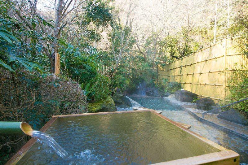 【帰れマンデー】神奈川の秘湯「pH11.3」の強アルカリ温泉が楽しめる!厚木飯山温泉『元湯旅館』