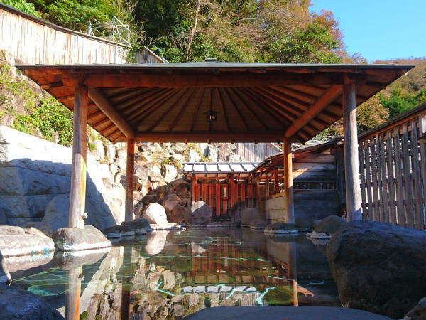 静岡 桜田温泉 山芳園