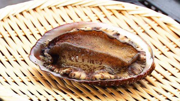 朝だ!生です旅サラダ コレうまの旅 プレゼント 6月8日 徳島 阿南