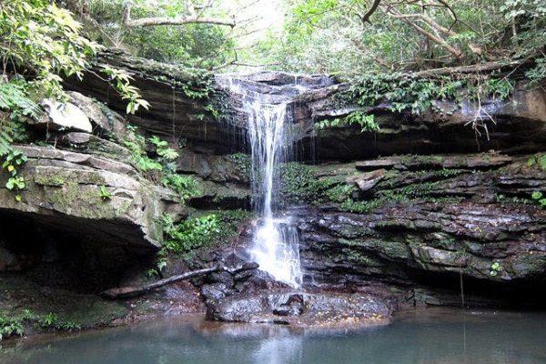 沖縄 西表島 クーラの滝