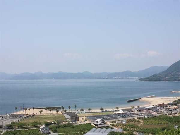 よ~いドン! たむらけんじ いきなり日帰りツアー 広島 しまなみ海道
