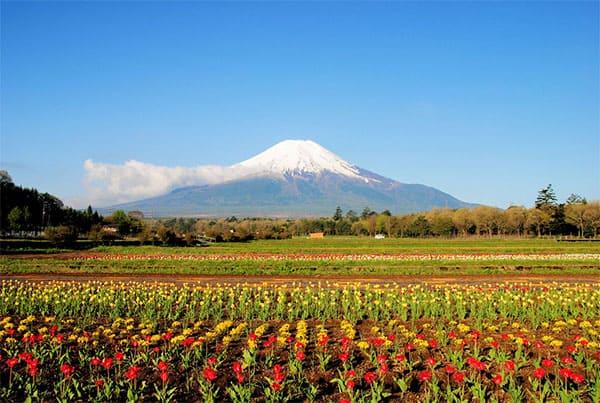 ほとバス 富士五湖 白糸の滝 富士宮市