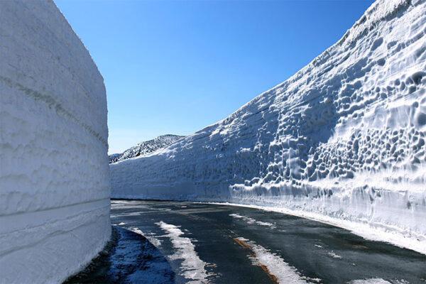 蔵王エコーライン 雪の回廊