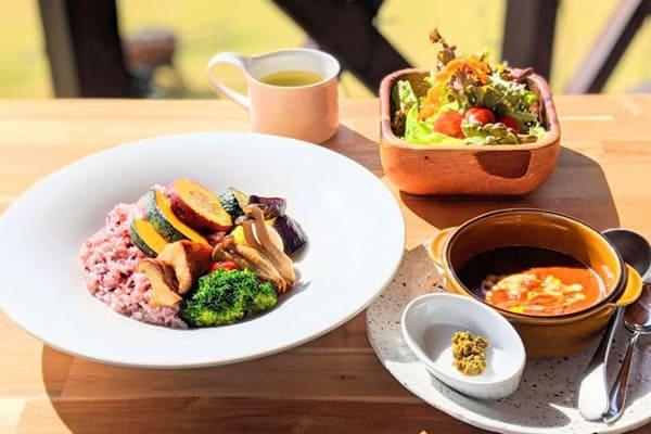 山梨 北杜市 農園レストラン ハーベストテラス八ヶ岳 自家製カレー